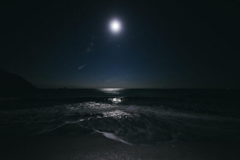 ホタルイカをとれる時期・場所は?発光が見れる場所を紹介!